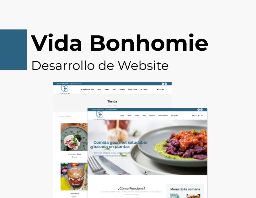 Portada Behance - Vida Bonhomie Desarrollo Web